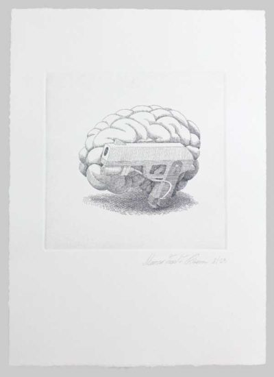 Zed1 -Cervello